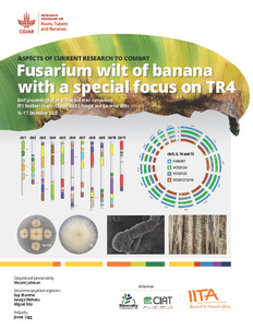 Aspects of current research to combat Fusarium wilt of banana with a special focus on TR4. Brief proceedings of an RTB virtual mini-symposium. FP3 Resilient Crops - Cluster BA3.3 Fungal and Bacterial Wilts.