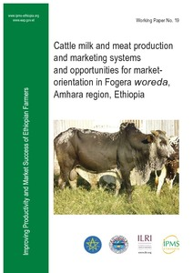 Cattle milk and meat production and marketing systems and