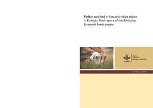 Fodder and feed in livestock value chains in ethiopia