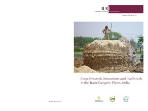 Crop–livestock interactions and livelihoods in the Trans-Gangetic