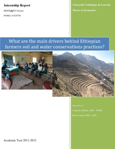 What are the main drivers behind Ethiopian farmers soil and