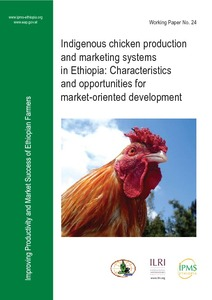 Indigenous chicken production and marketing systems in