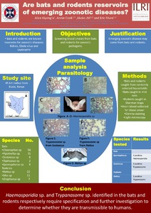 Bats and Rats reservoirs of emerging zoonotic diseases