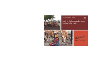 Study of the Ethiopian live cattle and beef value chain