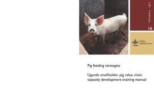 Pig feeding strategies Uganda smallholder pig value chain