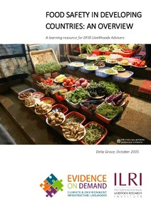 FOOD SAFETY IN DEVELOPING COUNTRIES: AN OVERVIEW