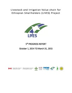 Livestock and Irrigation Value chain for Ethiopian