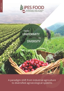 From uniformity to diversity: a paradigm shift from
