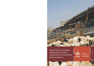 Saudi Arabia end-market requirements and the implications