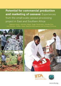 Potential for commercial production and marketing of cassava
