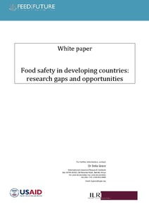 Food safety in developing countries: research gaps and