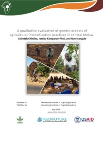 AR-ESA_MalawiGender_jun2017.pdf