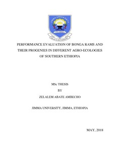 Performance evaluation of Bonga rams and their progenies in