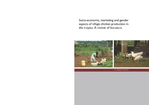 Socio-economic, marketing and gender aspects of village
